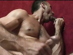 Gay hunk jerks while sucking cock